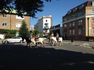 Street scenes 1