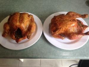 Chicken 160314