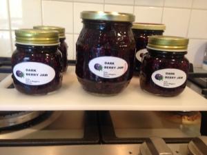 Dark berry jam