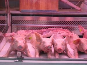 These little piggies went to market (La Boqueria, Barcelona)