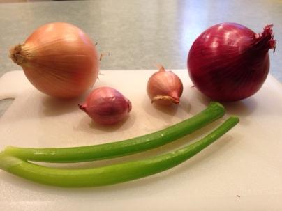 onion-types